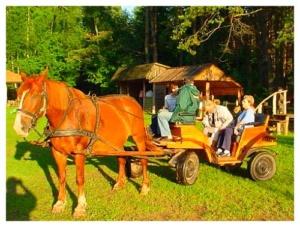 Noclegi na Mazurach, Osrodek Aneta, atrakcje w regionie